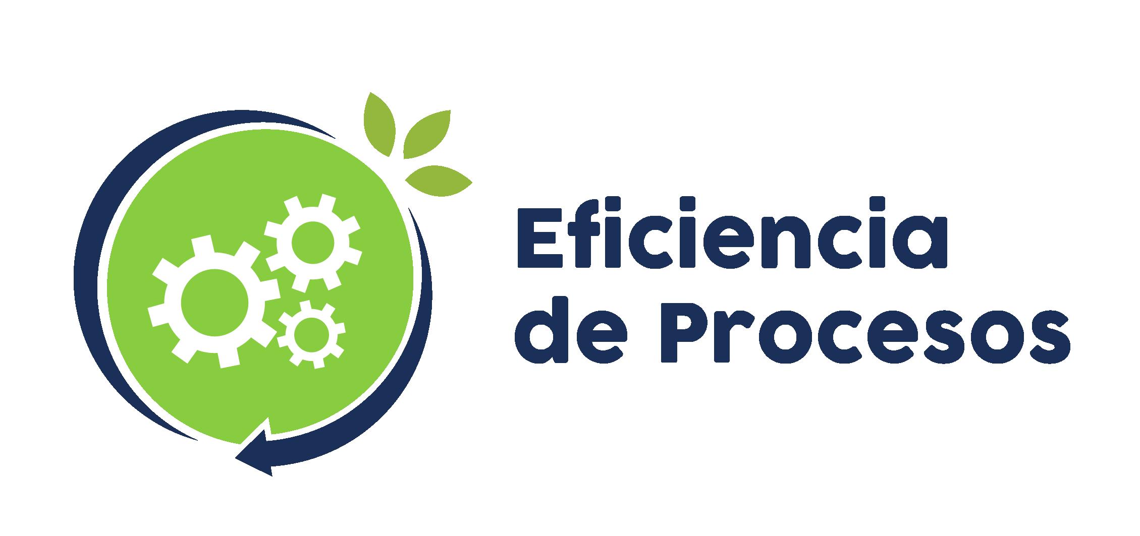 Eficiencia de procesos